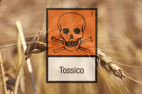 terreni-inquinati-caserta-materiale-tossico-discarica-abusiva